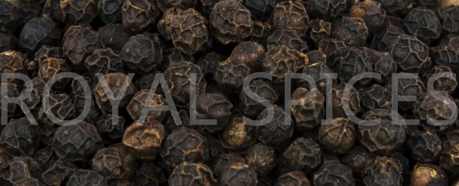 Vietnam Black Pepper | Pepper Market | Exporter | Supplier
