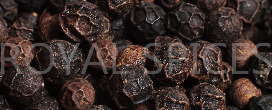Vietnam Black Pepper   Pepper Market   Exporter   Supplier